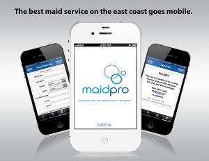 maid-pro-portfolio-lightbox-item